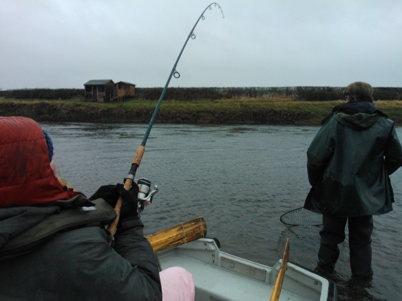 My words when I hooked it...'Ahh I've got a f***ing fish!'